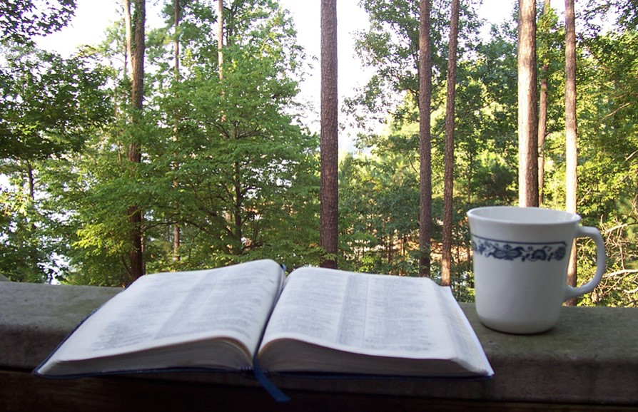 Bible and Teacup
